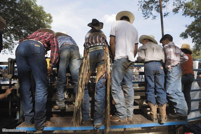 Cowboys & Bayou
