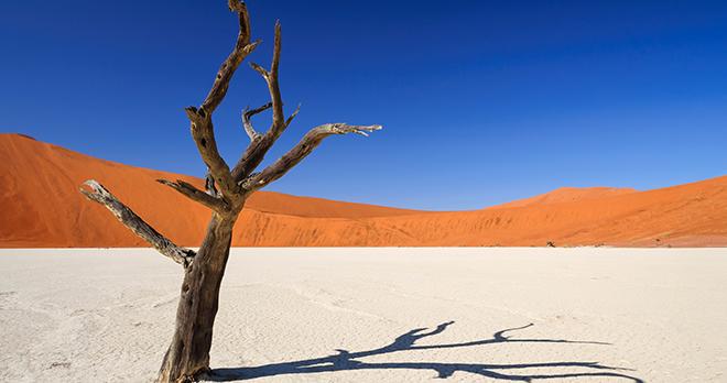 Offre - Destination : Namibie