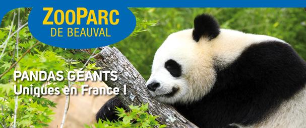 Venez passer une journée à la découverte du Zoo n°1 en France. Venez à la rencontre d'une faune et d'une flore riche en couleurs et en émotions ! Départ prévu le 03 juillet 2016 ZOOPARC DE BEAUVAL à partir de 90 € ttc au lieu de 90 € ttc