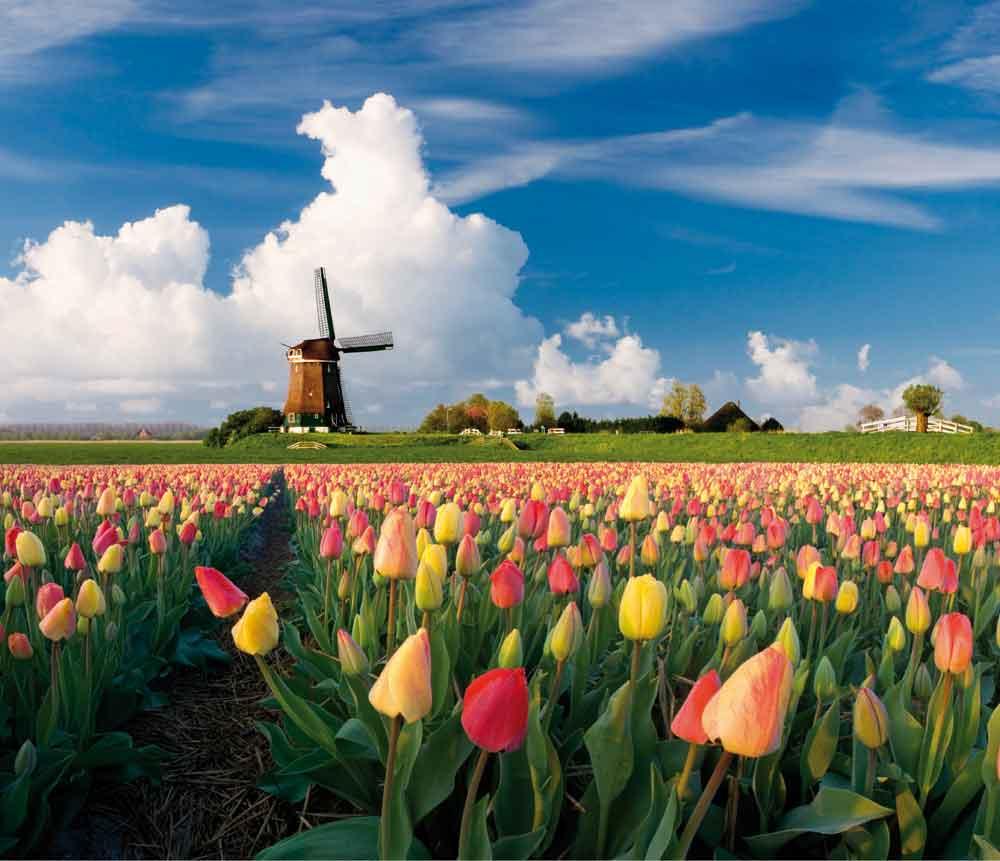 Voyage en autocar en hollande