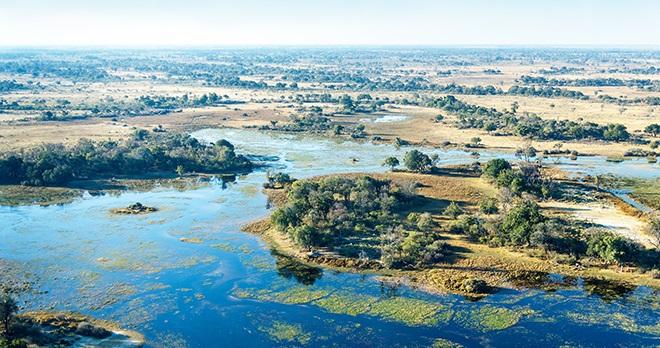 Offre - Destination : Botswana