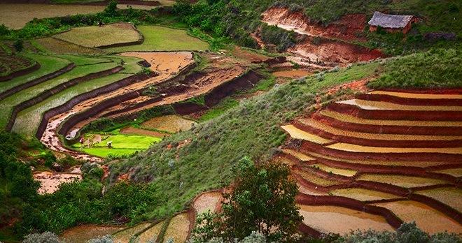 Offre - Destination : Madagascar