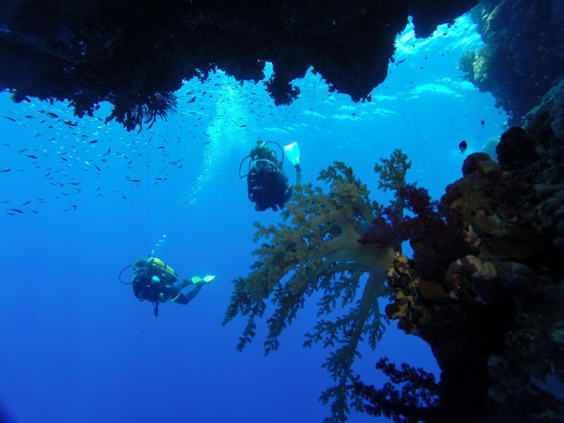 Photo Croisières plongée mer Rouge Travel Evasion